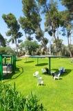 Trawa, drzewa, parasole i krzesła dla wakacji letnich, Fotografia Stock