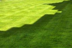 trawa grodowy cień Zdjęcia Stock