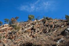 TRAWA I krzaki R MIĘDZY skałami NA wzgórzu zdjęcie stock