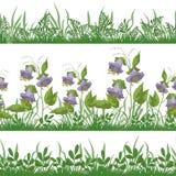 Trawa i kwiaty, ustawiamy bezszwowego Obraz Royalty Free