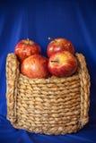 Trawa kosz czerwoni Starking jabłka 1 Zdjęcia Stock