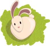 trawa królik Obrazy Royalty Free