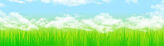 trawa nieba nagłówka sieci ilustracji