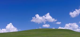 Trawa pod niebieskim niebem i biel chmurniejemy Obraz Stock