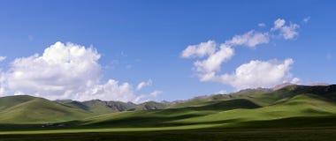 Trawa pod niebieskim niebem i biel chmurniejemy Zdjęcia Stock