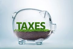 Trawa przyrost opodatkowywa pojęcie fotografia royalty free