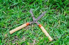 Trawa starzy nożyce Fotografia Stock