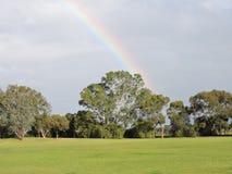 Trawa z drzewami i tęczą w tle Fotografia Royalty Free