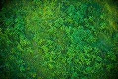 Trawa zielony wzór zdjęcie stock