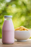 Trawberry milk Royalty Free Stock Images