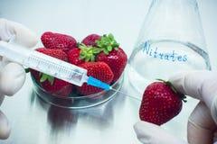 Trawberry wordt gevuld met nitraten stock fotografie