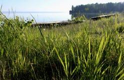 Trawiasty brzeg jezioro Fotografia Stock