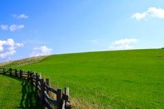 Trawiasty góry pole z Błękitnego grani Parkway w Pólnocna Karolina zdjęcie stock