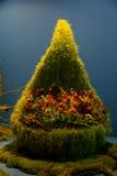 Trawiasty krzesło z kwiatami zdjęcia royalty free