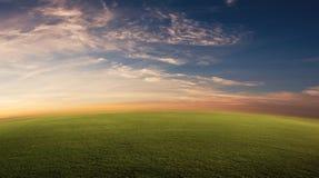 Trawiasty pole zdjęcie royalty free