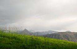 Trawiasty pole w Iceland zdjęcia royalty free