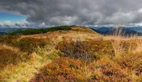 Trawiasty szczyt Zdjęcie Royalty Free