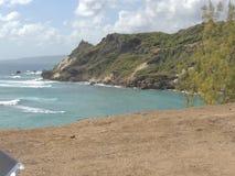 Trawiasty zbocze obok oceanu Fotografia Royalty Free