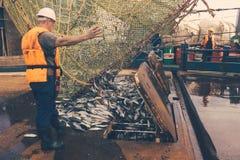 Trawl aboard Stock Image
