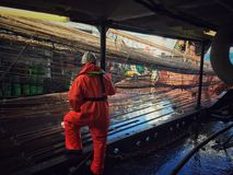 Trawl with redfish Royalty Free Stock Image