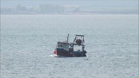 Trawler fishing tug boat and seagulls. Video of a small fishing trawler tug boat coming into harbour with a catch on the kent coast of whitstable may 2018 stock footage