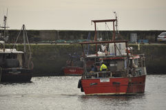 Trawler returns to Pittenweem Fife Scotland UK. UK SCOTLAND Pittenweem -- 13 Feb 2014 -- A fishing trawler returns to the harbour at Pittenweem in Fife Scotland Royalty Free Stock Photos