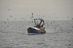 Trawler returns to Pittenweem Fife Scotland UK stock photo