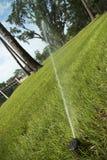 trawnik nawadniania Obrazy Royalty Free