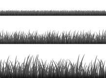 Trawy łąki granicy wektoru wzór Wiosny lub lato rośliny pola gazon Czarny i biały trawy tło royalty ilustracja