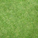 trawy śródpolna piłka nożna Fotografia Royalty Free