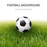 trawy balowa piłka nożna Zdjęcie Stock