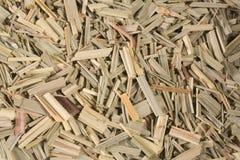 trawy cytryna Fotografia Stock