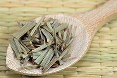 trawy cytryna zdjęcie royalty free