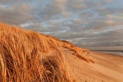 Trawy diuna w wieczór świetle z widokiem morza zdjęcie stock