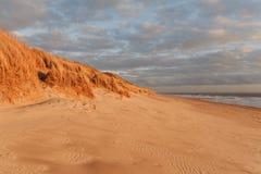 Trawy diuna w wieczór świetle z widokiem morza zdjęcia stock