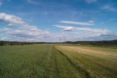 Trawy droga Zdjęcia Stock