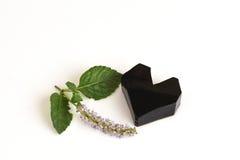 Trawy galareta, warzywo galareta, czarna w kolorze, jedzącym z cukierem (Mesona chinensis) Obrazy Royalty Free