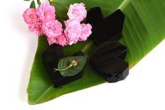 Trawy galareta, warzywo galareta, czarna w kolorze, jedzącym z cukierem (Mesona chinensis) Zdjęcia Stock