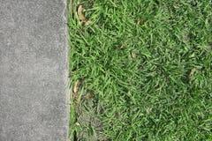 Trawy i betonu tekstura Obrazy Stock