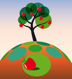 trawy jabłczany drzewo Obraz Royalty Free