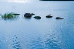 trawy jeziora kamień Fotografia Royalty Free