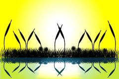 trawy jeziorny sceny sylwetki zmierzch ilustracja wektor