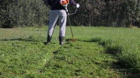 trawy mężczyzna kośba wysoka zbiory