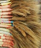 Trawy miotła Obrazy Royalty Free