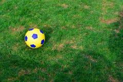 trawy na refleksje piłkarską wody Obraz Royalty Free