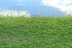 trawy nieba woda fotografia stock