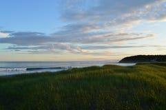 Trawy plaża macha przy zmierzchem Fotografia Royalty Free