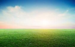 Trawy pola krajobraz panoramiczny fotografia stock