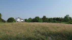 Trawy pole na sposobu domu Zdjęcia Stock