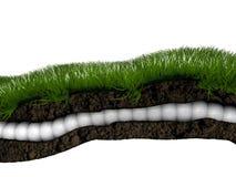 trawy sekcja ilustracja wektor
